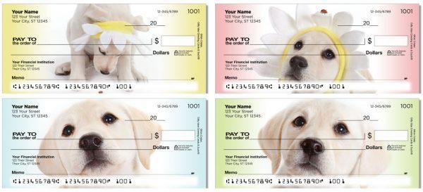 Yellow Lab Pup Checks