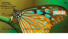 Butterfly Checks