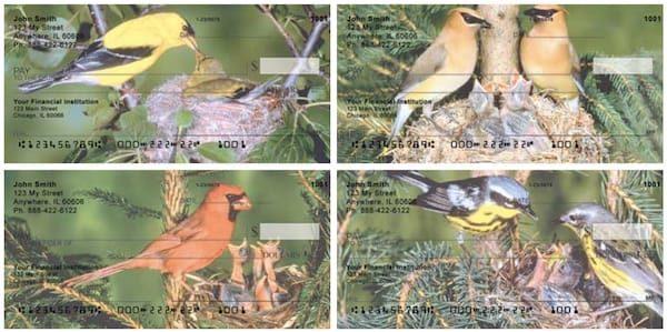 Baby Birds Personal Checks