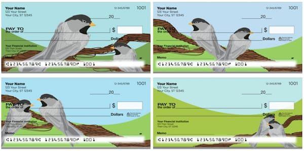 Black-Capped Chickadee Checks