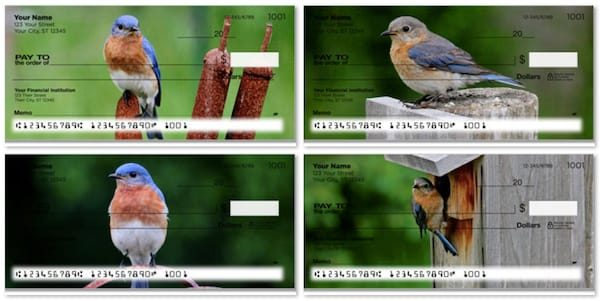 Bluebird Checks