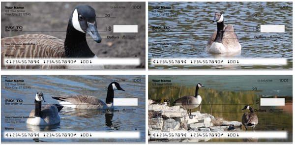 Canada Geese Checks