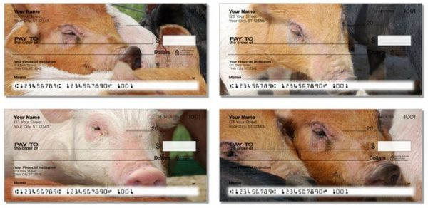 Realistic Photograph of Pigs Personal Check