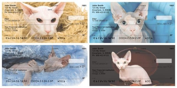 Hairless Sphynx Kittens Personal Checks